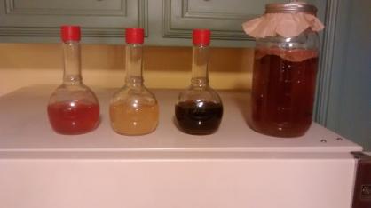 vinegar from left: red basil honey, apple cider, red wine, kombucha
